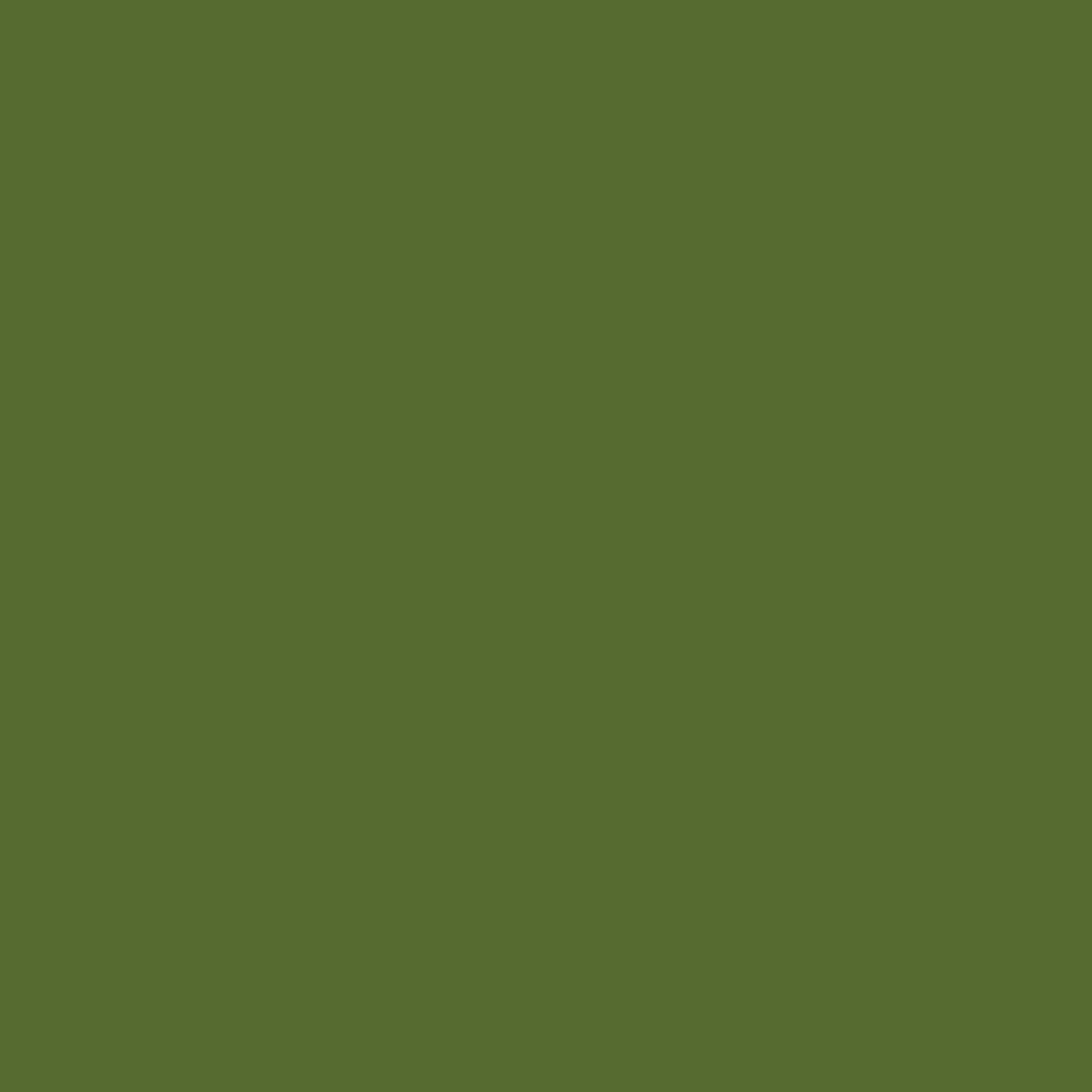 Weiß-oliv