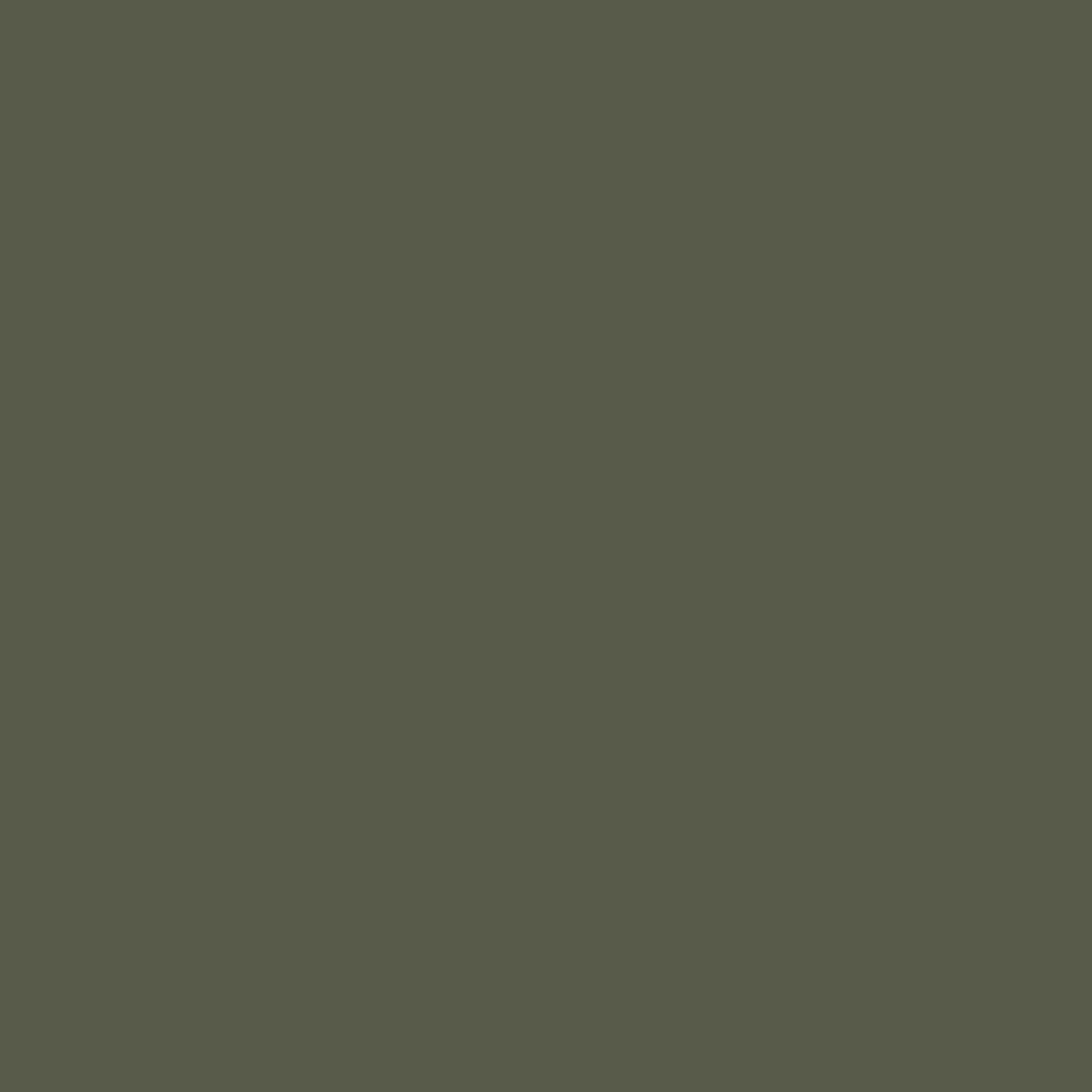 Dark olive green