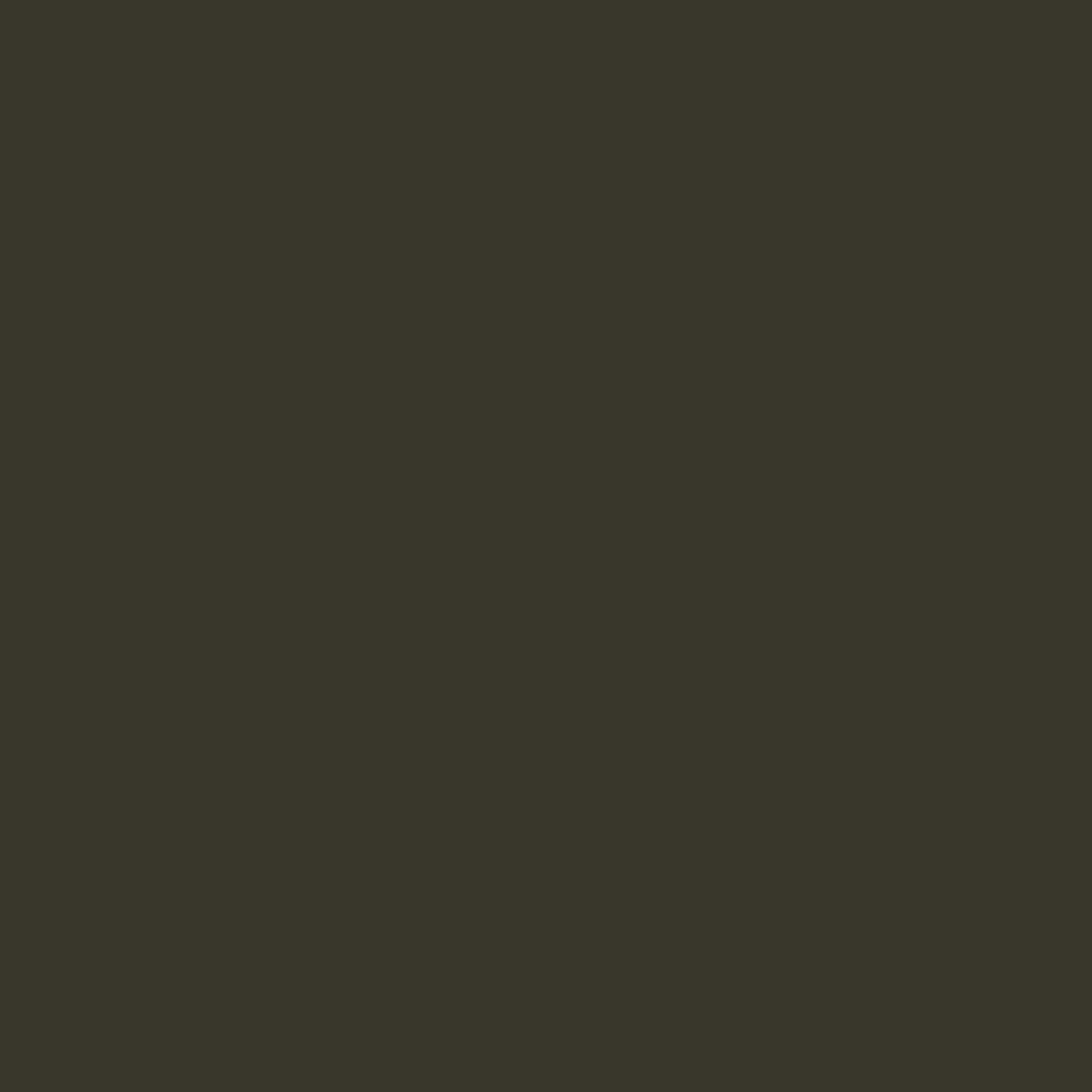 Dark olive-tarmac