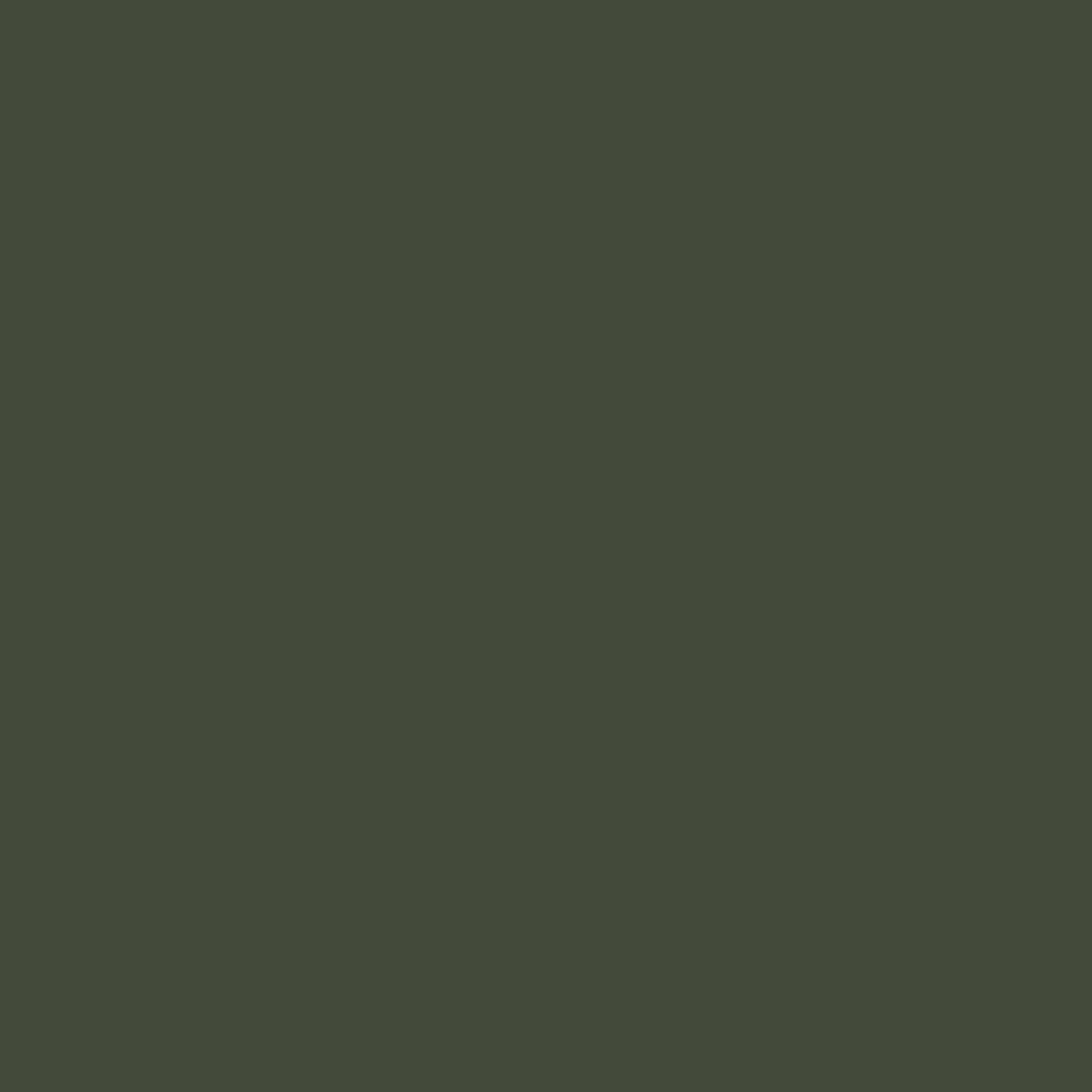 Vert chameau